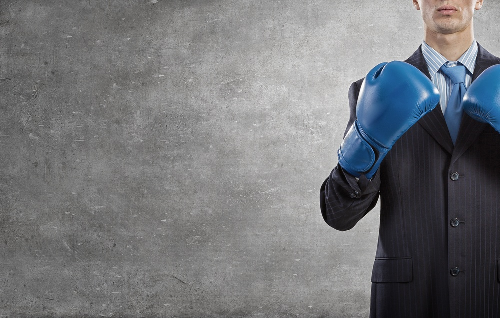 fighting an irs audit by yourself