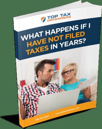 back_taxes_ebook_image